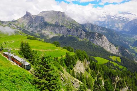 Swiss-Train-AS_110969912